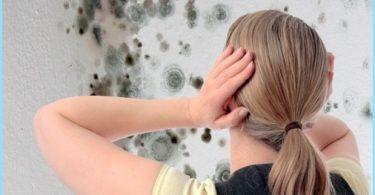 Hvordan bli kvitt mugg på badet: et middel til å bekjempe