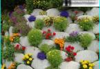 Arbeid i hagen i mars måned: hvordan ta vare på hagen din?