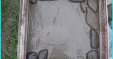 Vann støvsuger for å rengjøre dammen: lære å velge riktig (+ svar)